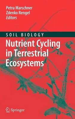 Nutrient Cycling in Terrestrial Ecosystems - Soil Biology 10 (Hardback)
