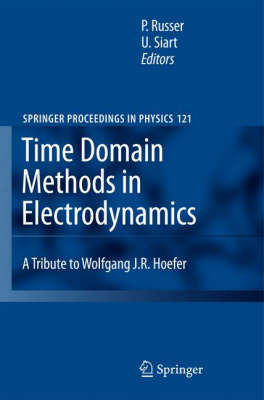 Time Domain Methods in Electrodynamics: A Tribute to Wolfgang J. R. Hoefer - Springer Proceedings in Physics 121 (Hardback)