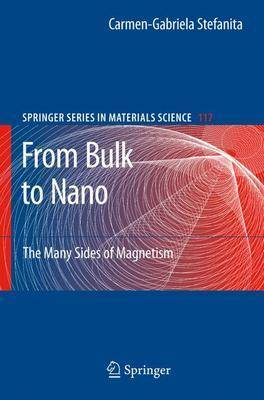 From Bulk to Nano: The Many Sides of Magnetism - Springer Series in Materials Science 117 (Hardback)