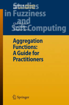 Aggregation Functions: A Guide for Practitioners - Studies in Fuzziness and Soft Computing 221 (Hardback)
