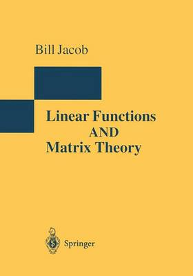 Linear Functions and Matrix Theory - Encyclopaedia of Mathematical Sciences 1 (Paperback)