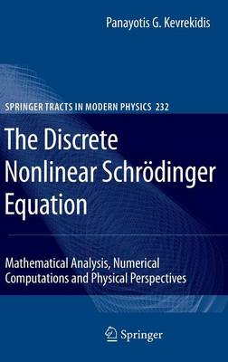 The Discrete Nonlinear Schroedinger Equation: Mathematical Analysis, Numerical Computations and Physical Perspectives - Springer Tracts in Modern Physics 232 (Hardback)