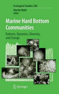 Marine Hard Bottom Communities: Patterns, Dynamics, Diversity, and Change - Ecological Studies 206 (Hardback)
