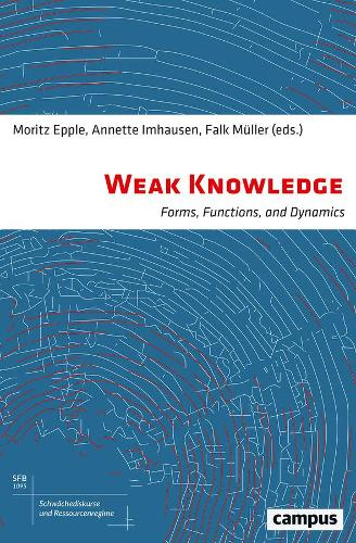 Weak Knowledge: Forms, Functions, and Dynamics (Hardback)