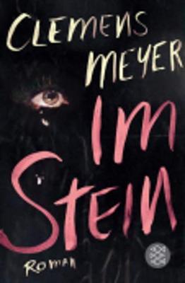 Im Stein (Paperback)
