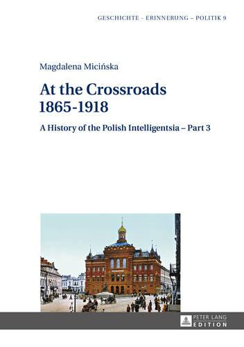 At the Crossroads: 1865-1918: A History of the Polish Intelligentsia - Part 3, Edited by Jerzy Jedlicki - Geschichte - Erinnerung - Politik. Studies in History, Memory and Politics 9 (Hardback)