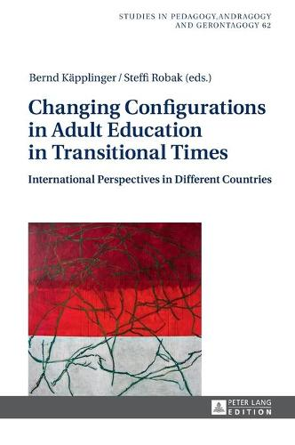 Changing Configurations in Adult Education in Transitional Times: International Perspectives in Different Countries - Studien zur Paedagogik, Andragogik und Gerontagogik / Studies in Pedagogy, Andragogy, and Gerontagogy 62 (Hardback)
