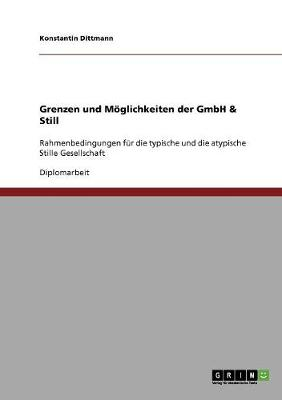 Grenzen Und Moglichkeiten Der Gmbh & Still (Paperback)