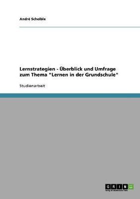 Lernstrategien - Uberblick Und Umfrage Zum Thema Lernen in Der Grundschule (Paperback)