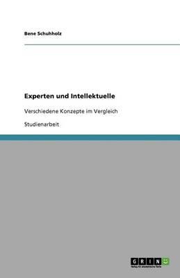 Experten Und Intellektuelle (Paperback)