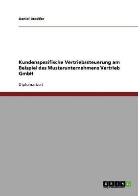 Kundenspezifische Vertriebssteuerung. Kundenorientierung in Ganzheitlichen Ansatzen (Paperback)