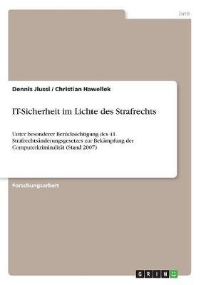 It-Sicherheit Im Lichte Des Strafrechts (Paperback)