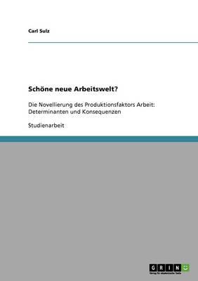 Schone Neue Arbeitswelt? (Paperback)