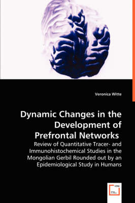 Dynamic Changes in the Development of Prefrontal Networks (Paperback)