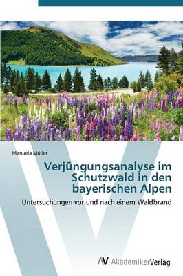 Verjungungsanalyse Im Schutzwald in Den Bayerischen Alpen (Paperback)