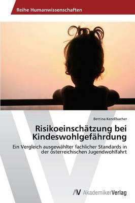Risikoeinschatzung Bei Kindeswohlgefahrdung (Paperback)