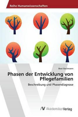 Phasen der Entwicklung von Pflegefamilien (Paperback)