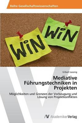 Mediative Fuhrungstechniken in Projekten (Paperback)