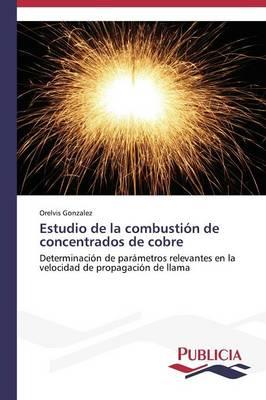 Estudio de La Combustion de Concentrados de Cobre (Paperback)