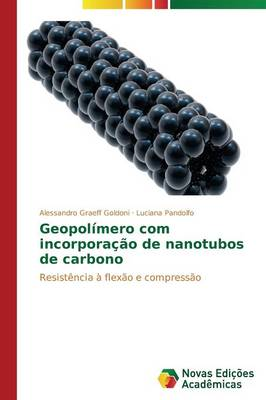 Geopolimero Com Incorporacao de Nanotubos de Carbono (Paperback)