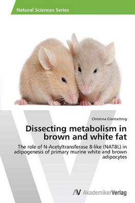Dissecting Metabolism in Brown and White Fat (Paperback)