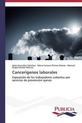 Cancerigenos Laborales (Paperback)