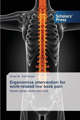 Ergonomics Intervention for Work-Related Low Back Pain (Paperback)