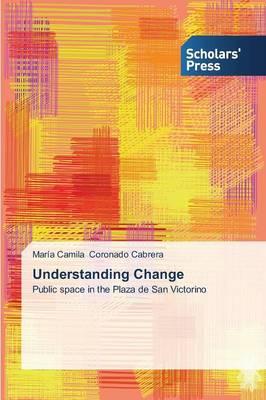 Understanding Change (Paperback)