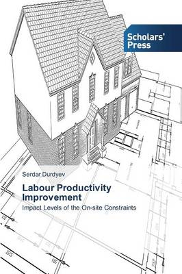 Labour Productivity Improvement (Paperback)