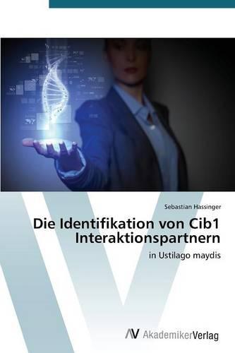 Die Identifikation Von Cib1 Interaktionspartnern (Paperback)