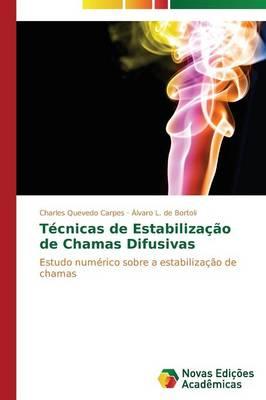 Tecnicas de Estabilizacao de Chamas Difusivas (Paperback)