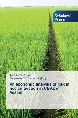 An Economic Analysis of Risk in Rice Cultivation in Ubvz of Assam (Paperback)