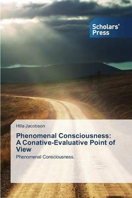 Phenomenal Consciousness: A Conative-Evaluative Point of View (Paperback)