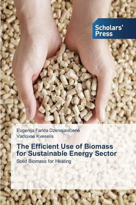 The Efficient Use of Biomass for Sustainable Energy Sector (Paperback)