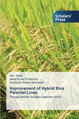 Improvement of Hybrid Rice Parental Lines (Paperback)