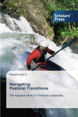Navigating Pastoral Transitions (Paperback)