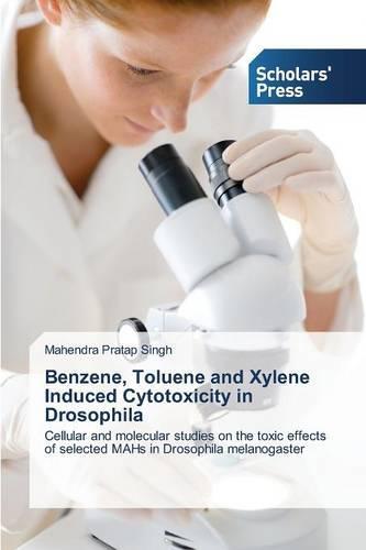Benzene, Toluene and Xylene Induced Cytotoxicity in Drosophila (Paperback)