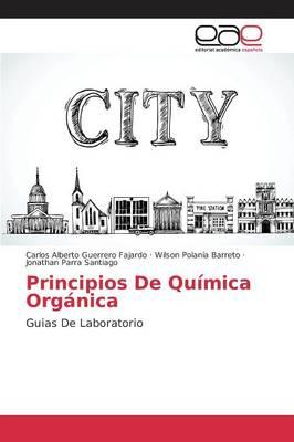 Principios de Quimica Organica (Paperback)