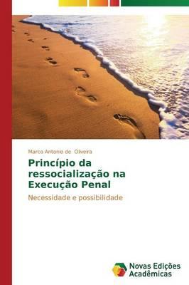 Principio Da Ressocializacao Na Execucao Penal (Paperback)
