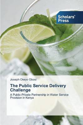 The Public Service Delivery Challenge (Paperback)