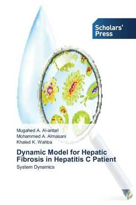 Dynamic Model for Hepatic Fibrosis in Hepatitis C Patient (Paperback)