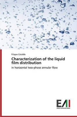 Characterization of the Liquid Film Distribution (Paperback)