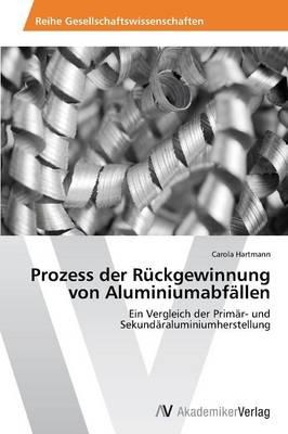 Prozess Der Ruckgewinnung Von Aluminiumabfallen (Paperback)