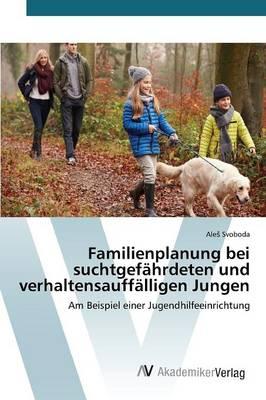 Familienplanung Bei Suchtgefahrdeten Und Verhaltensauffalligen Jungen (Paperback)