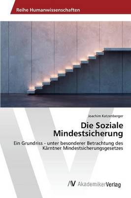 Die Soziale Mindestsicherung (Paperback)