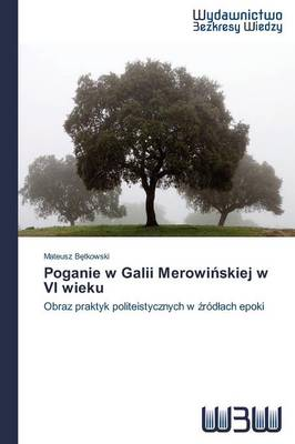 Poganie W Galii Merowi Skiej W VI Wieku (Paperback)