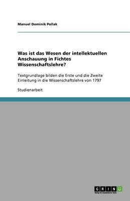 Was Ist Das Wesen Der Intellektuellen Anschauung in Fichtes Wissenschaftslehre? (Paperback)