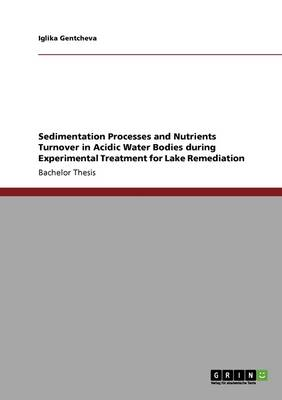 Sedimentation Processes and Nutrients Turnover in Acidic Water Bodies During Experimental Treatment for Lake Remediation (Paperback)