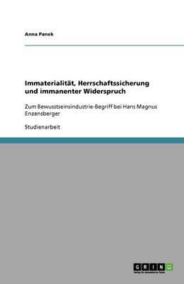 Immaterialitat, Herrschaftssicherung Und Immanenter Widerspruch (Paperback)