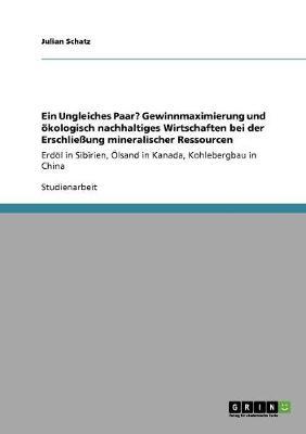Ein Ungleiches Paar? Gewinnmaximierung Und Okologisch Nachhaltiges Wirtschaften Bei Der Erschlieung Mineralischer Ressourcen (Paperback)
